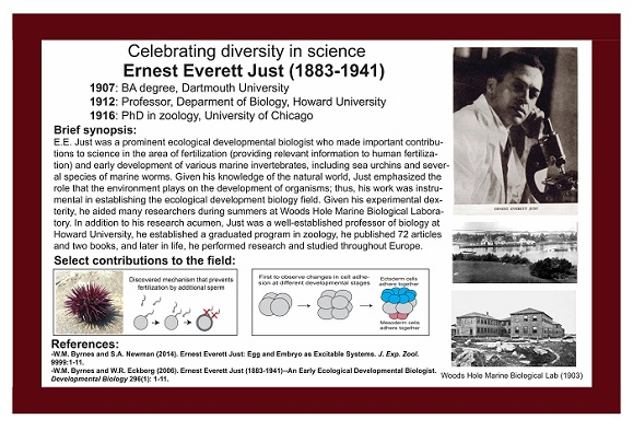 Ernest Everett Just - Biologist